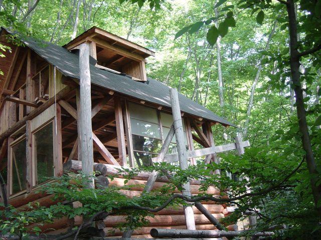 けやきの森でログハウスづくり